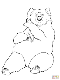 sloth bear from india coloring page free printable coloring pages