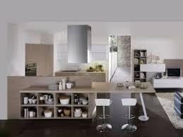 cuisine sejour design interieur cuisine ouverte îlot bois clair espace rangement