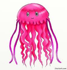 cute jellyfish drawings google search camis favorites
