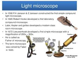 Parts Of A Compound Light Microscope Microscope