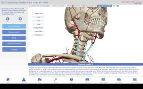 Essentials Of Human Anatomy And Physiology Book Online Online Anatomy Course Accredited At Best Way To Study Anatomy And