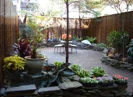 glamorous trees for small backyards pictures design ideas amys