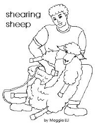sheep kids teachers kiddyhouse farm sheep
