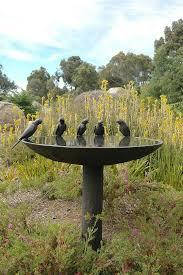 the most poisonous plants in australia hipages com au 22 best australian native garden plants images on pinterest