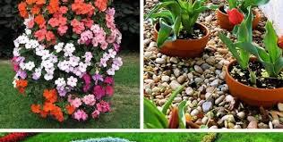 25 flower bed designs ideas on pinterest flower garden and