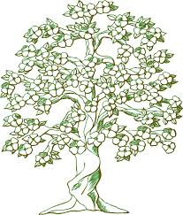 free vector graphic tree branches flowering tree free image