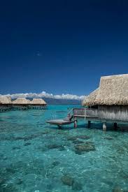 bora bora resorts bungalow moorea resorts islands