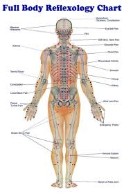 27 best body images on pinterest massage therapy health and