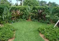 Landscaping Company In Miami by Commercial Landscaping Plant Perfection Landscaping Services Florida