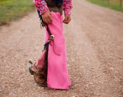 Cowgirl Halloween Costume Toddler Toddler Chaps Cowboy Cowgirl Costume Dress Play Western