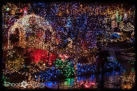 Vandusen Botanical Garden Lights Vandusen Botanical Gardens Throws A Dazzling Celebration Of Light