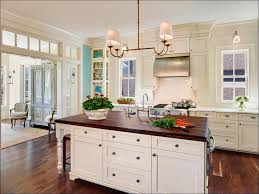 What Color Should I Paint My Kitchen Cabinets Kitchen Backsplash For Dark Cabinets Painting Oak Cabinets
