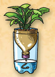 self watering planters todowhatyoulove