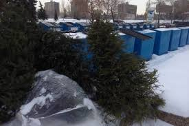 what do i get my for christmas how do i get rid of my christmas tree in edmonton