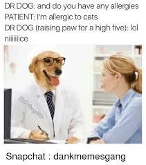 Dog Doctor Meme - 25 best memes about dr dog dr dog memes