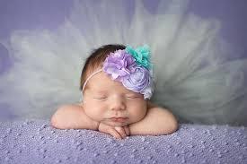newborn photographer ct newborn photographer elizabeth frederick photography
