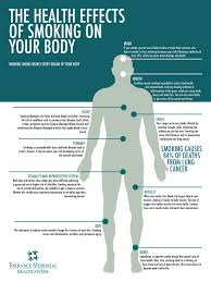 the health effects of smoking on your body torrance memorial the health effects of smoking on your body
