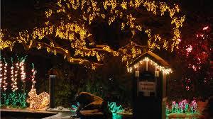 Bellevue Botanical Garden Lights Bellevue Magic Season Westin Bellevue