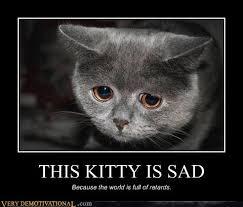Sad Kitty Meme - this kitty is sad very demotivational demotivational posters