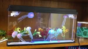 Jellyfish Home Decor by New Deluxe Jellyfish Aquarium Youtube