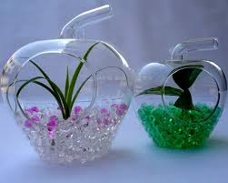 Water Beads Centerpieces 309 Best Crystal Soil Water Beads Decoration Images On Pinterest