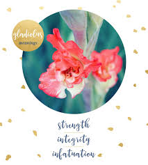 Gladiolus Flowers Gladiolus Meaning And Symbolism Ftd Com