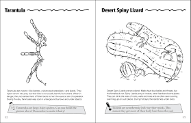 desert life of the southwest activity book adventurepublications net