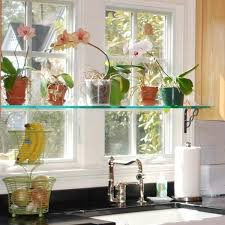 window table for plants 20 best plant shelves images on pinterest plants windows and
