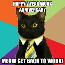 Anniversary Meme - happy 2 year work anniversary cat meme cat planet cat planet