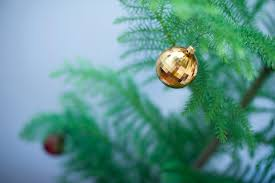 photo of gold bauble on a christmas tree free christmas images