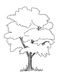 Trees Coloring Pages Download And Print Trees Coloring Pages Tree Coloring Pages