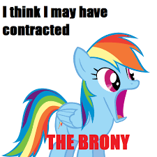 Know Your Meme Brony - brony contraction my little pony friendship is magic know