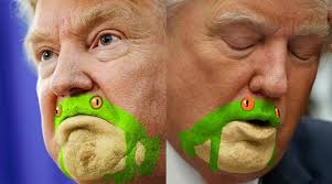 Frog Face Meme - somebody noticed trump s chin resembled a frog results in