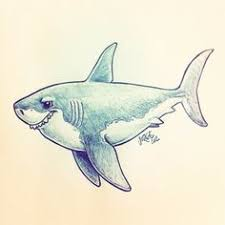 my drawing of a great white shark time lapse video www youtube