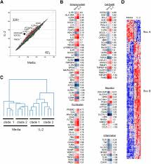 selective il 2 responsiveness of regulatory t cells through