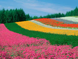 Most Beautiful Gardens In The World Garden Design Garden Design With Beautiful Flowers Garden In The