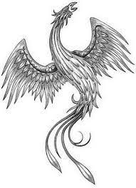 phoenix tattoo images u0026 designs