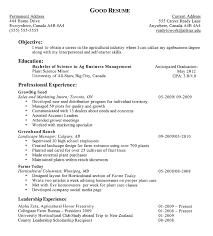 high school resume exles literarywondrous resume exles for high school students