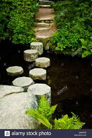 walking path closeup stepping stones in asticou azalea japanese