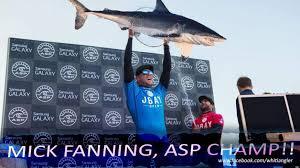 Shark Attack Meme - best mick fanning shark attack memes to bless the internet