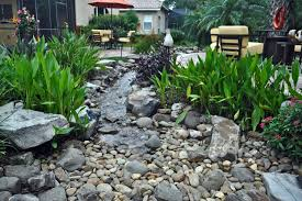 Tropical Landscape Design by Waterfall Stream With Dry Creek Tropical Landscape Tampa