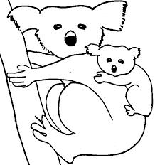 koala bear coloring coloring pages