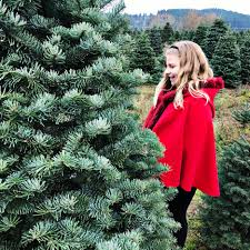 holiday traditions christmas tree farm travel blog single mom