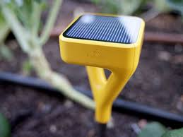 The Smart Garden by A Smart Sensor That Quantifies The Soil In Your Garden Wired