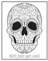 chill the f ck out a swear word coloring book amazon co uk