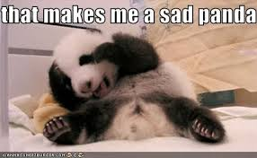 Sad Panda Meme - image 92707 sad panda know your meme