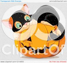 cute halloween png clipart of a cute kitten wearing a speckled costume and curled up