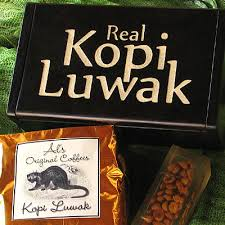 Luwak Coffee real kopi luwak complete info about this gourmet coffee from