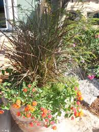 Down To Earth Landscaping by Down To Earth Landscaping