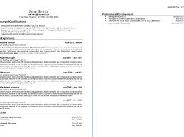 Shidduch Resume Fake Resume Example Inspiration Decoration Shidduch Resume